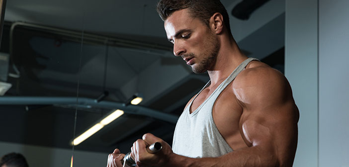 Nandrolone phenylpropionate dosage and cycle guide